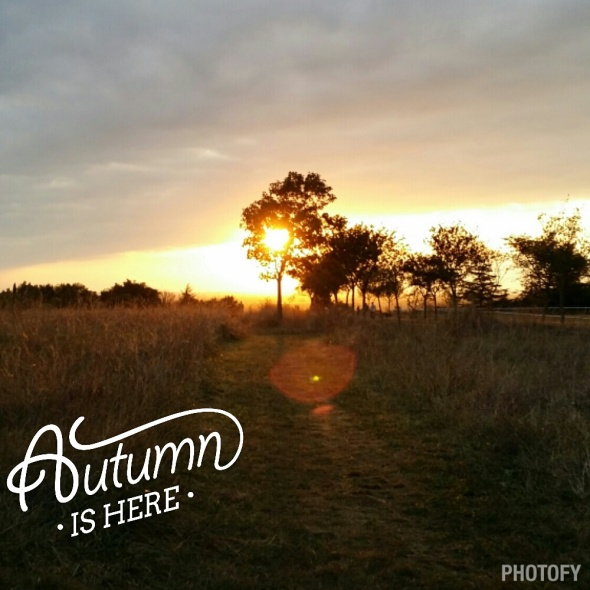automne is here